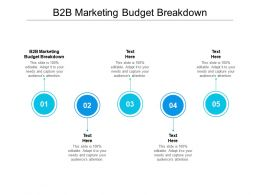B2B Marketing Budget Breakdown Ppt Powerpoint Presentation Guidelines Cpb