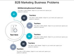 B2b Marketing Business Problems Ppt Powerpoint Presentation File Professional Cpb
