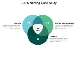 B2B Marketing Case Study Ppt Powerpoint Presentation Portfolio Designs Download Cpb