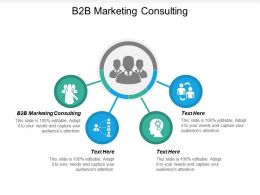 B2B Marketing Consulting Ppt Powerpoint Presentation Gallery Guidelines Cpb