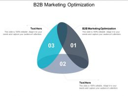B2b Marketing Optimization Ppt Powerpoint Presentation File Show Cpb