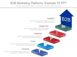 B2b Marketing Platforms Example Of Ppt