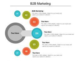B2B Marketing Ppt Powerpoint Presentation Icon Tips Cpb