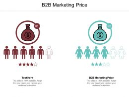 B2B Marketing Price Ppt Powerpoint Presentation File Background Cpb