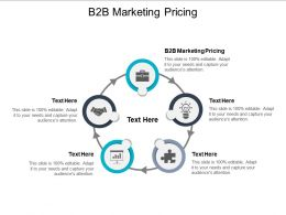 B2B Marketing Pricing Ppt Powerpoint Presentation Styles Slide Portrait Cpb
