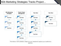 B2b Marketing Strategies Tracks Project Management Enterprise Planning Resource Cpb