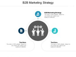 B2B Marketing Strategy Ppt Powerpoint Presentation Gallery Graphic Images Cpb