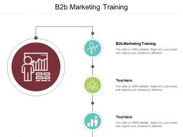 B2B Marketing Training Ppt Powerpoint Presentation File Background Designs Cpb
