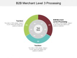 B2B Merchant Level 3 Processing Ppt Powerpoint Presentation Layouts Influencers Cpb