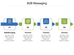 B2B Messaging Ppt Powerpoint Presentation Show Background Cpb