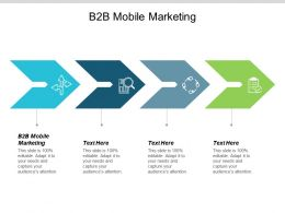 B2B Mobile Marketing Ppt Powerpoint Presentation Icon Example Topics Cpb