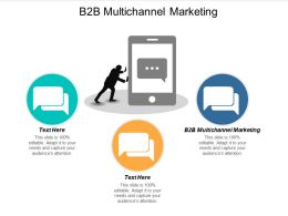 B2B Multichannel Marketing Ppt Powerpoint Presentation Pictures Portfolio Cpb