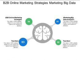 B2b Online Marketing Strategies Marketing Big Data Analytics Cpb