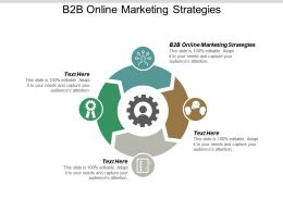 B2B Online Marketing Strategies Ppt Powerpoint Presentation Summary Brochure Cpb