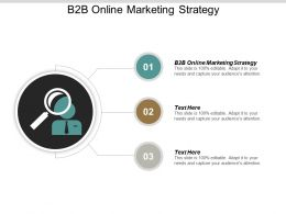 B2B Online Marketing Strategy Ppt Powerpoint Presentation Summary Display Cpb