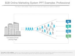 B2b Online Marketing System Ppt Examples Professional
