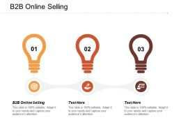 B2b Online Selling Ppt Powerpoint Presentation File Inspiration Cpb