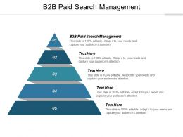 B2B Paid Search Management Ppt Powerpoint Presentation Summary Grid Cpb