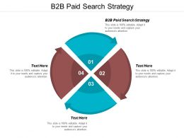 B2B Paid Search Strategy Ppt Powerpoint Presentation Pictures Professional Cpb