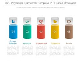 B2b Payments Framework Template Ppt Slides Download