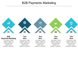 B2B Payments Marketing Ppt Powerpoint Presentation Gallery Ideas Cpb
