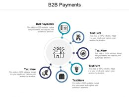 B2B Payments Ppt Powerpoint Presentation Infographics Cpb