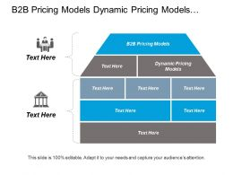 B2b Pricing Models Dynamic Pricing Models Organisational Structure Design Cpb