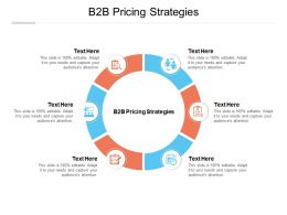 B2B Pricing Strategies Ppt Powerpoint Presentation Icon Sample Cpb