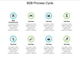 B2B Process Cycle Ppt Powerpoint Presentation File Graphics Download Cpb