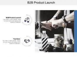 B2B Product Launch Ppt Powerpoint Presentation File Layouts Cpb