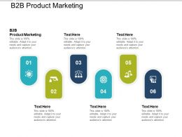 B2B Product Marketing Ppt Powerpoint Presentation Professional Icons Cpb