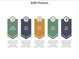 B2B Product Ppt Powerpoint Presentation Gallery Gridlines Cpb