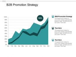 B2b Promotion Strategy Ppt Powerpoint Presentation Infographics Graphics Example Cpb