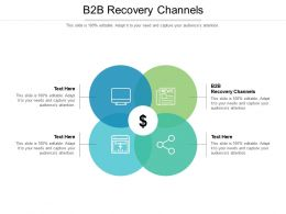 B2B Recovery Channels Ppt Powerpoint Presentation File Example File Cpb