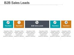 B2B Sales Leads Ppt Powerpoint Presentation File Outline Cpb