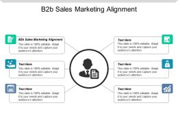 B2b Sales Marketing Alignment Ppt Powerpoint Presentation File Graphic Images Cpb