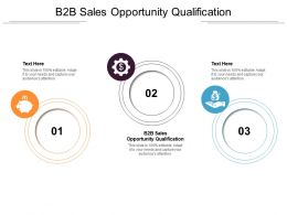 B2B Sales Opportunity Qualification Ppt Powerpoint Presentation Styles Pictures Cpb