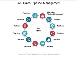 B2B Sales Pipeline Management Ppt Powerpoint Presentation Portfolio Cpb