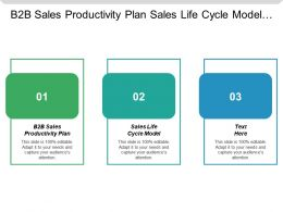 B2b Sales Productivity Plan Sales Life Cycle Model Cpb
