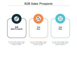 B2B Sales Prospects Ppt Powerpoint Presentation Icon Master Slide Cpb