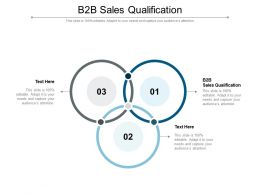 B2B Sales Qualification Ppt Powerpoint Presentation Layouts File Formats Cpb