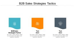 B2B Sales Strategies Tactics Ppt Powerpoint Presentation Styles Show Cpb