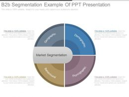 B2b Segmentation Example Of Ppt Presentation