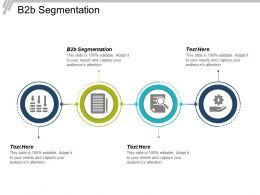B2b Segmentation Ppt Powerpoint Presentation Ideas Smartart Cpb