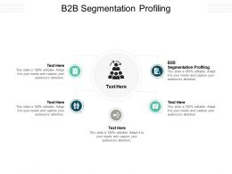 B2B Segmentation Profiling Ppt Powerpoint Presentation Gallery Display Cpb