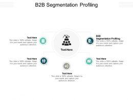 B2B Segmentation Profiling Ppt Powerpoint Presentation Gallery Display Cpb