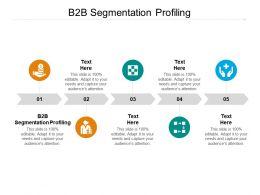 B2B Segmentation Profiling Ppt Powerpoint Presentation Icon Aids Cpb