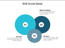 B2B Social Media Ppt Powerpoint Presentation Gallery Design Templates Cpb
