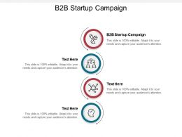B2B Startup Campaign Ppt Powerpoint Presentation Design Templates Cpb