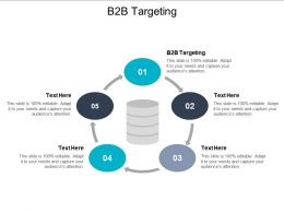B2B Targeting Ppt Powerpoint Presentation Pictures Show Cpb